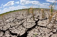 GERMANY DROUGHT